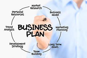 Sviluppo di Business Plan aziendali